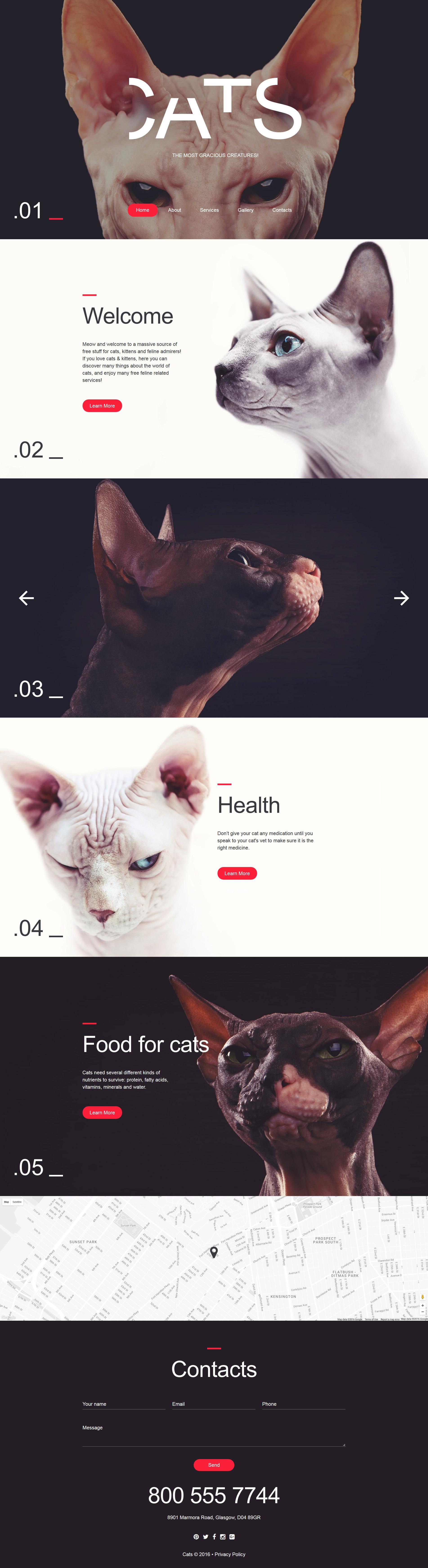 Reszponzív Macskák témakörű Weboldal sablon 58052