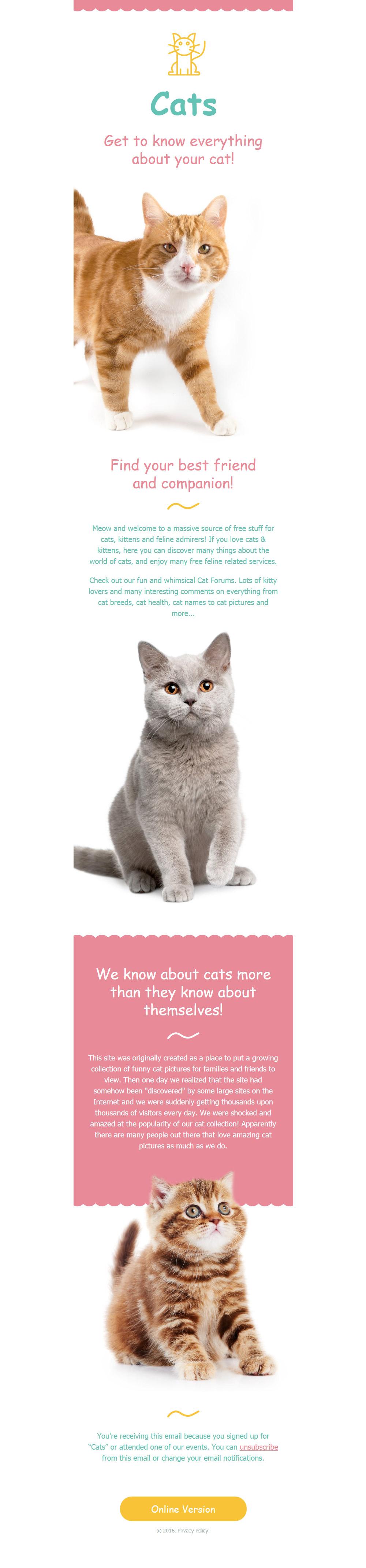 Template de Newsletter Flexível para Sites de Gatos №58039