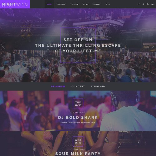 Night Wing - Responsive Website Template