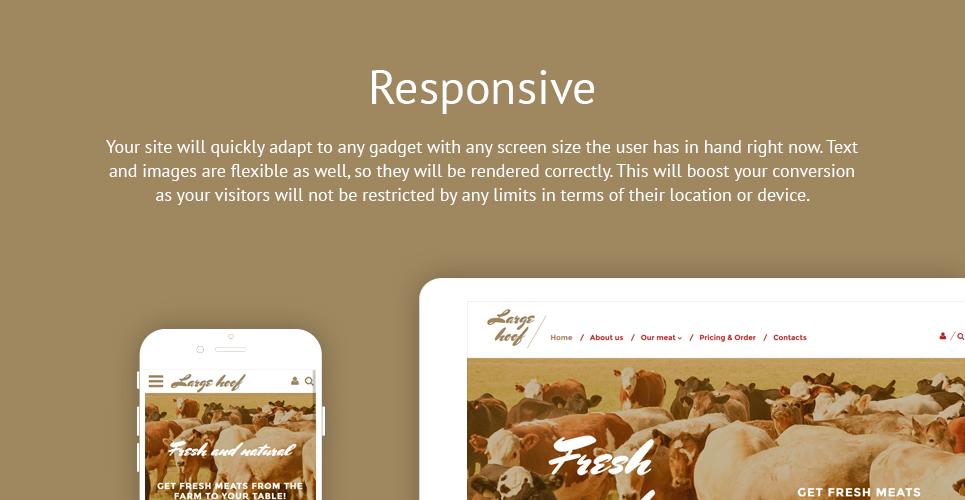 Large Hoob  Responsive Website Template