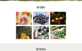 Herber - Accurate Organic Food Online Store Website Template