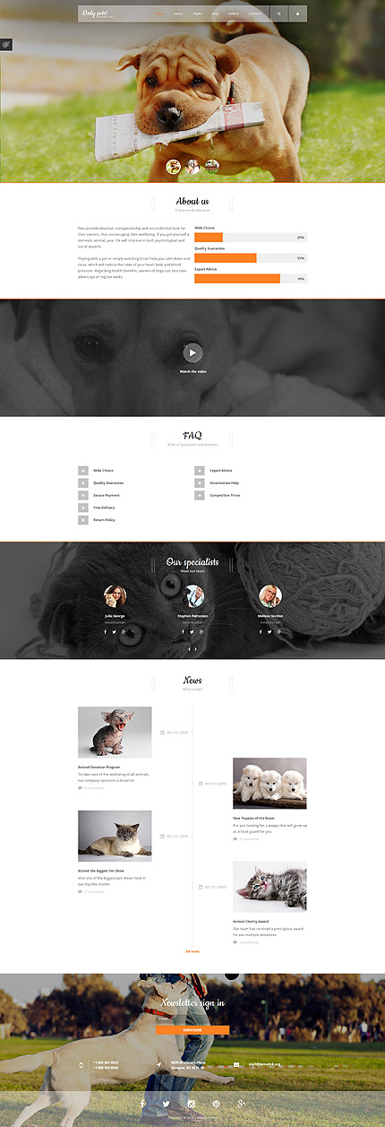 Joomla Theme/Template 58479 Main Page Screenshot