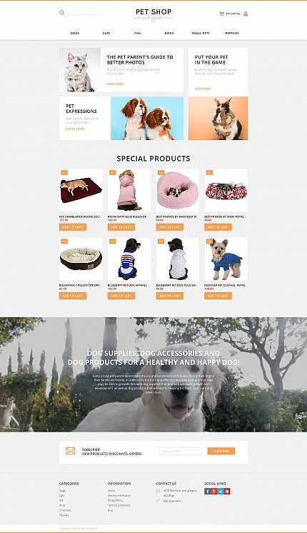 ADOBE Photoshop Template 58489 Home Page Screenshot