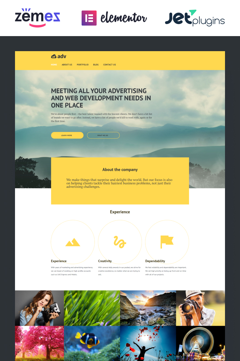 Adv WordPress Theme - screenshot