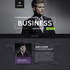 Corporate style landing page templates templatemonster business parallax landing page template 58438 fbccfo Gallery