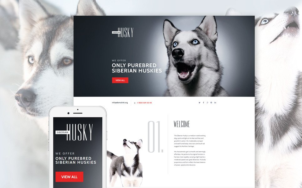 Canine Landing Page Template New Screenshots BIG