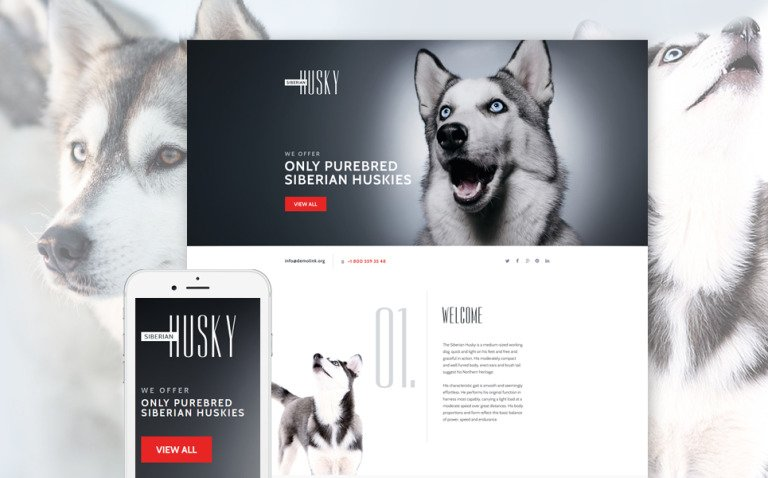 Canine Landing Page Template New Screenshots BIG