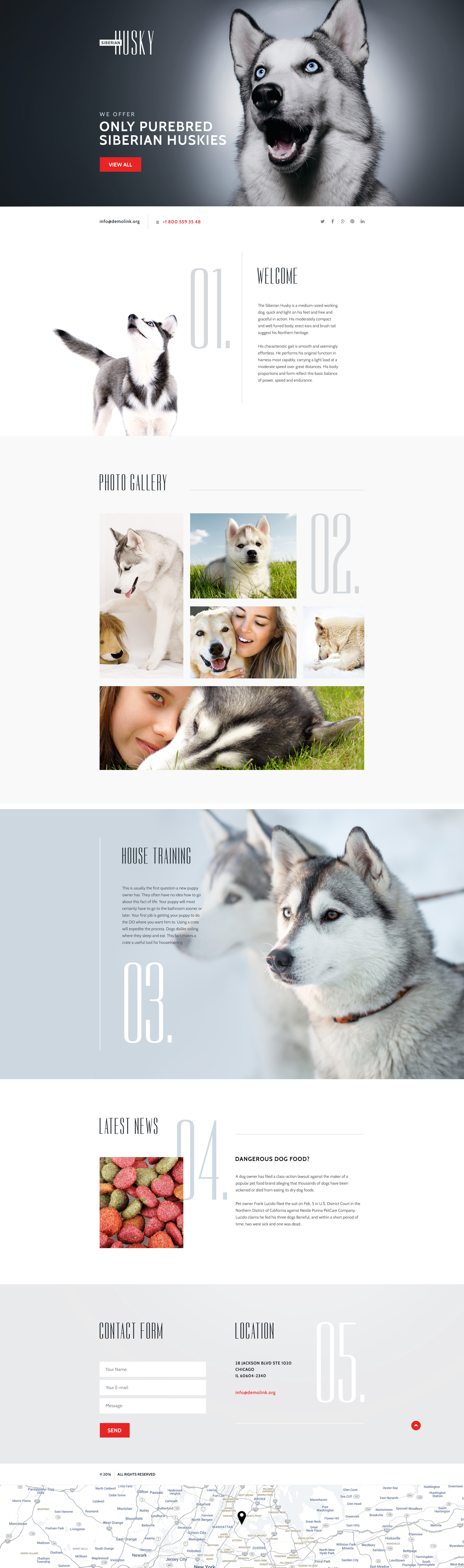Canine Landing Page Template
