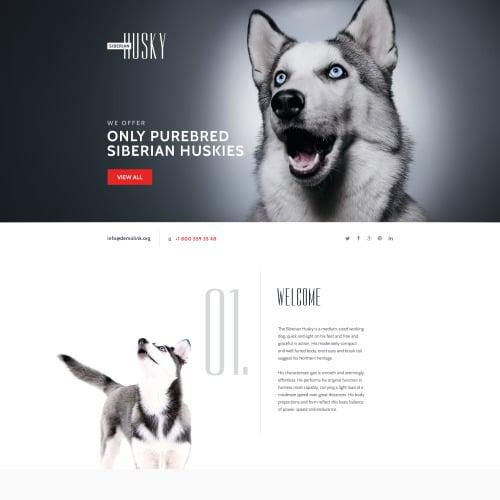 Husky - Responsive Landing Page Template