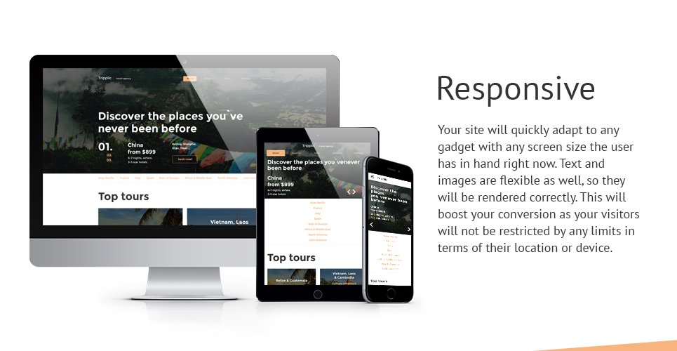 Tripplic Website Template