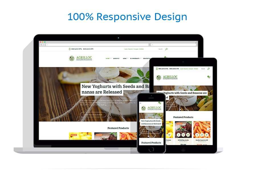 WooCommerce Themes Alimentation et Boissons #58670