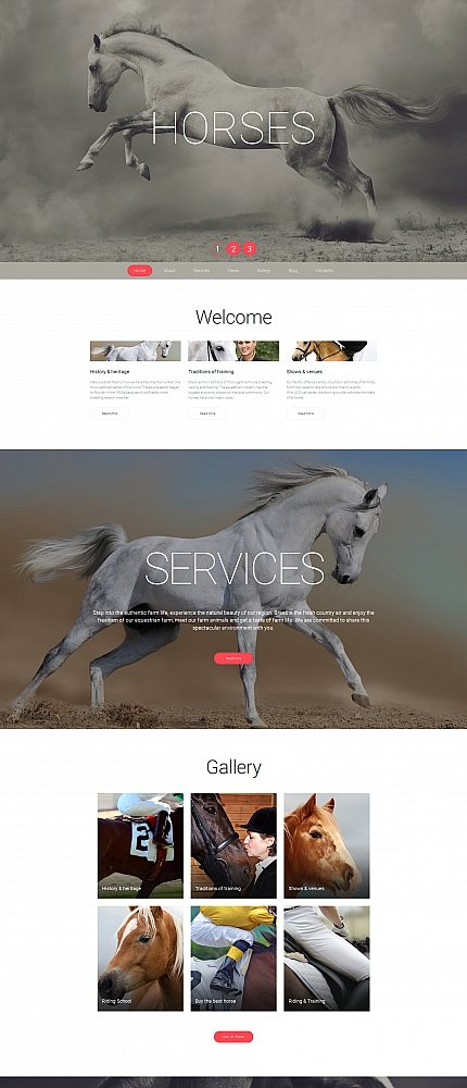 ADOBE Photoshop Template 58687 Home Page Screenshot