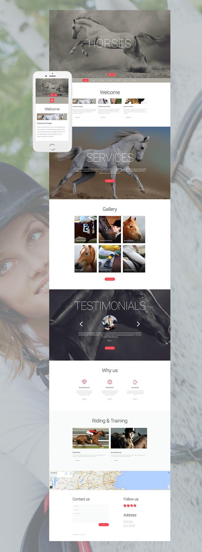Responsive website for horse breeders