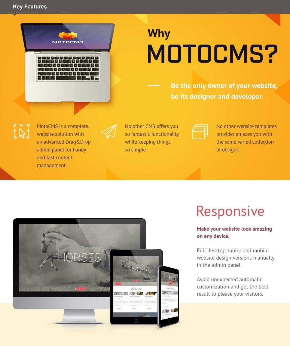 Equestrian Farm  Responsive Moto CMS 3 Template