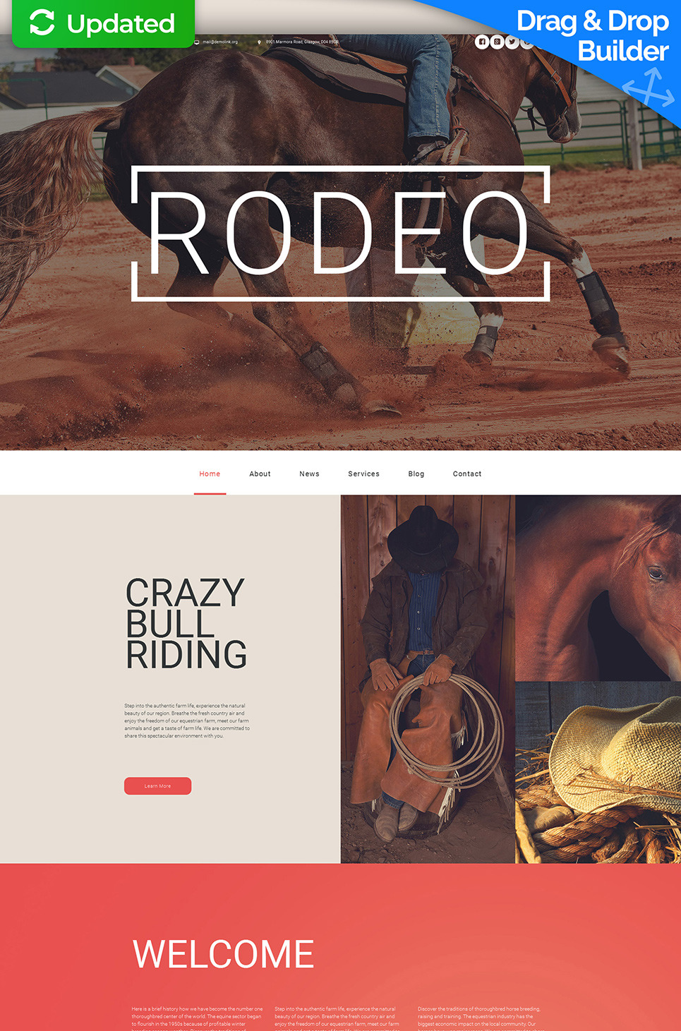 Horse Responsive Moto CMS 3 Template New Screenshots BIG