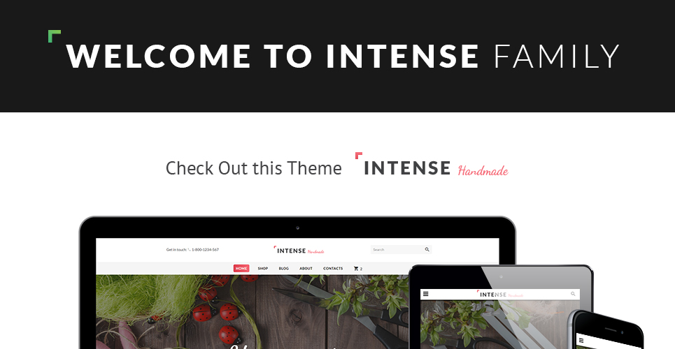 Intense Handmade Website Template