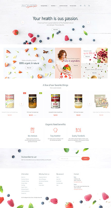 Magento Theme/Template 58960 Main Page Screenshot
