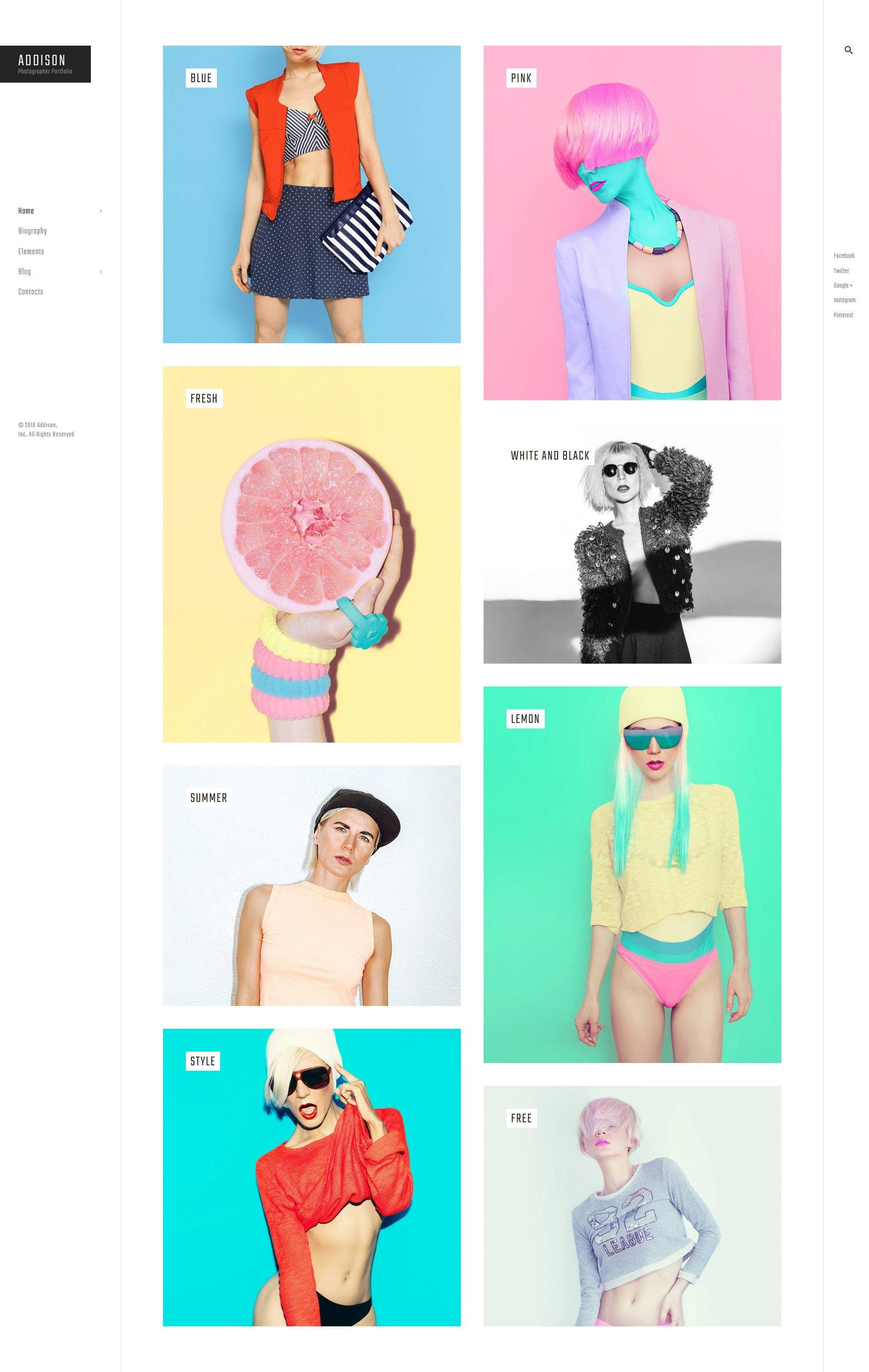"""Addison - Creative Photographer Portfolio"" - адаптивний WordPress шаблон №58912 - скріншот"