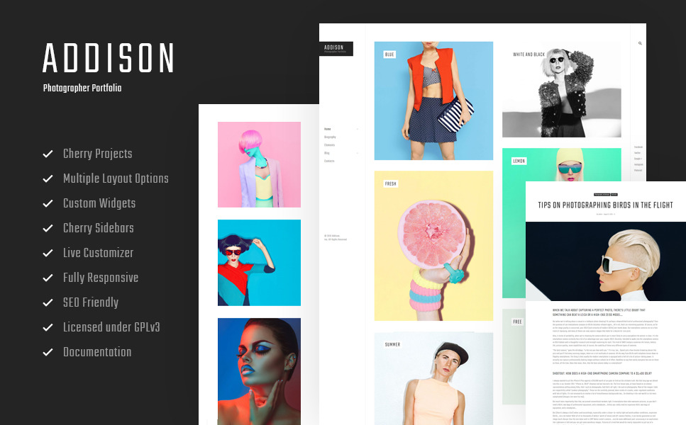 Best fashion wordpress theme 24