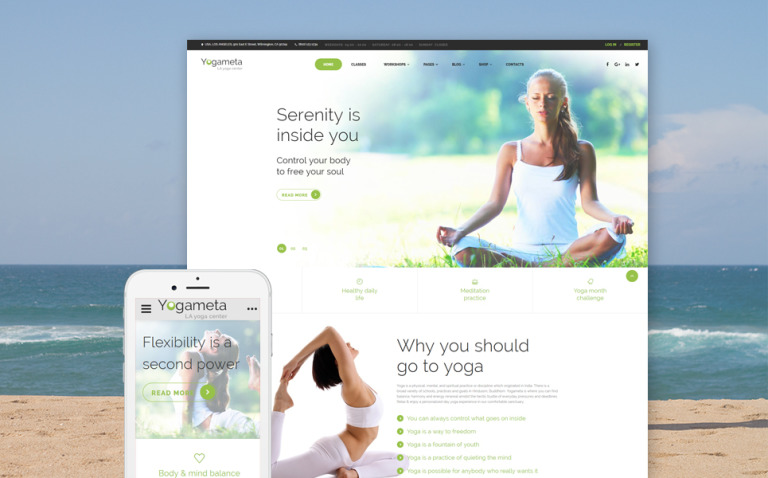 Yogameta Website Template New Screenshots BIG
