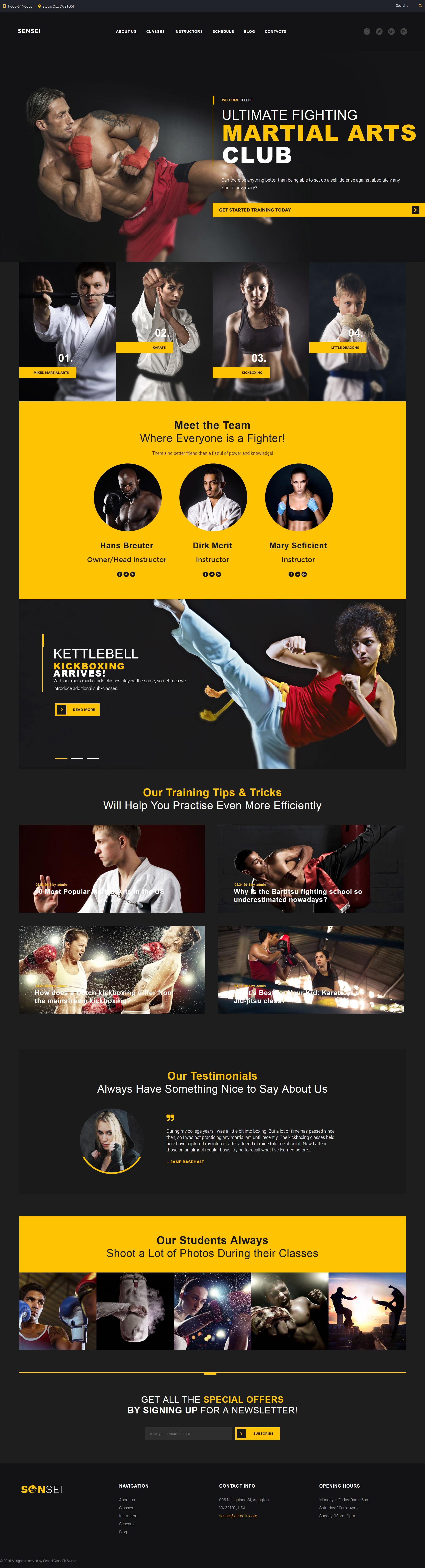 Адаптивный шаблон сайта на тему боевые искусства #59019