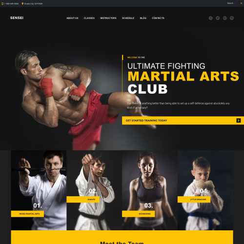 Sensei  - Responsive WordPress Template