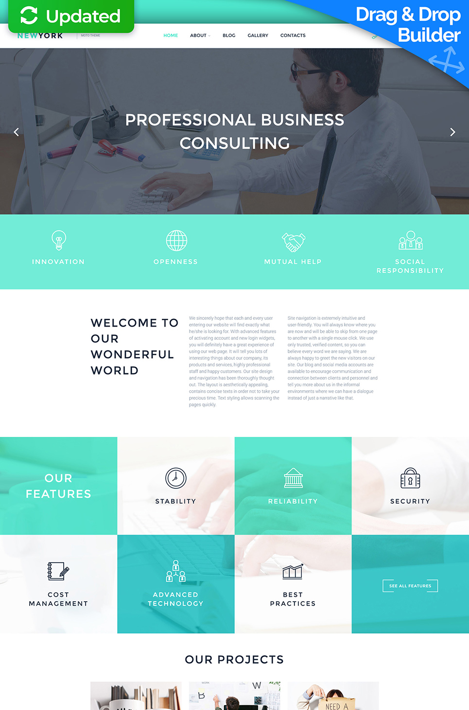 Consulting Company Website Design - image