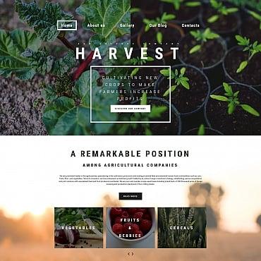 Купить MotoCMS 3 шаблон сайта сельскохозяйственного предприятия - HARVEST. Купить шаблон #59260 и создать сайт.