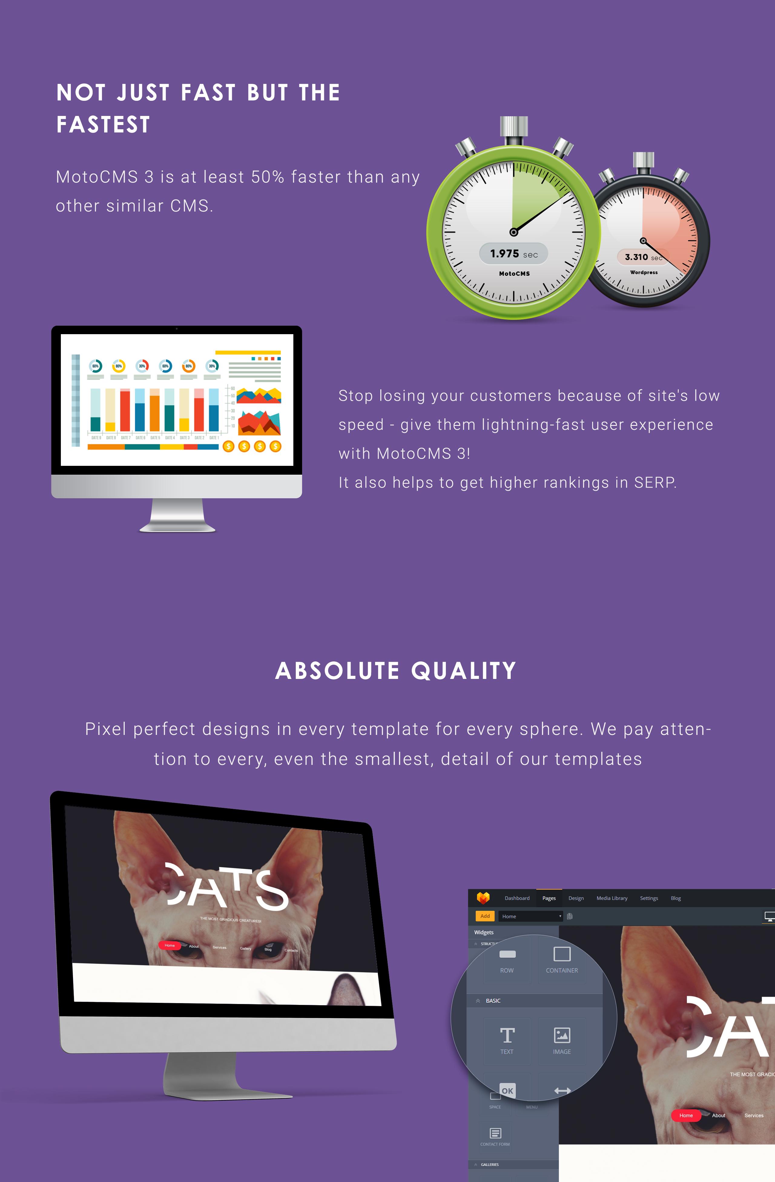 Cat Responsive Moto CMS 3 Template