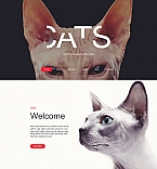 59276 Animals & Pets Moto CMS 3 Templates