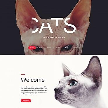 Купить Шаблон сайта о кошках - CATS. Купить шаблон #59276 и создать сайт.