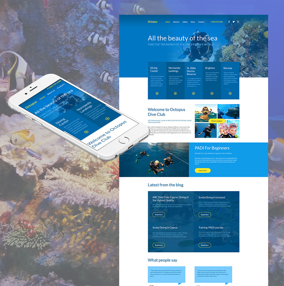 Octopus HTML Website Template - image