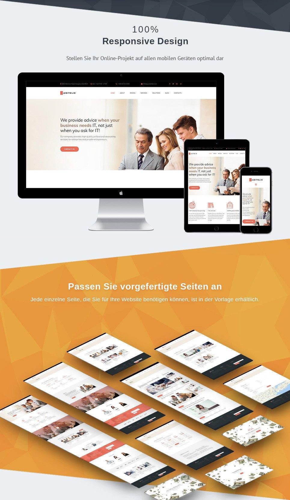 Auditelix Responsive Homepage-Vorlage | MotoCMS