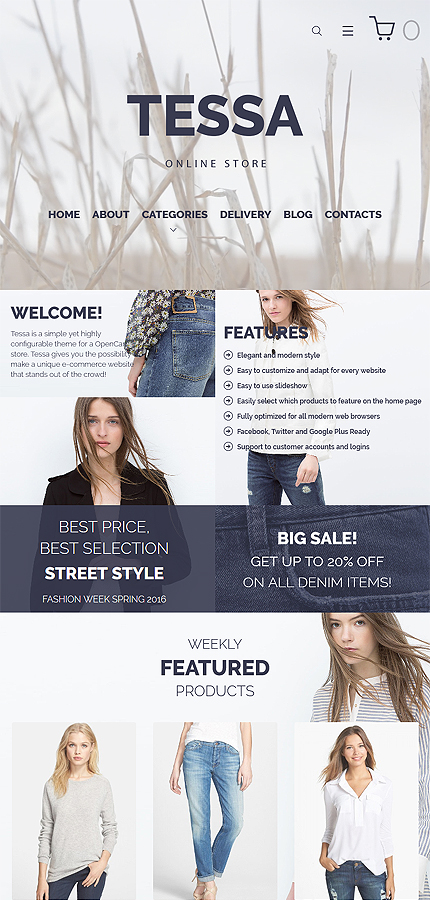 ADOBE Photoshop Template 59569 Home Page Screenshot