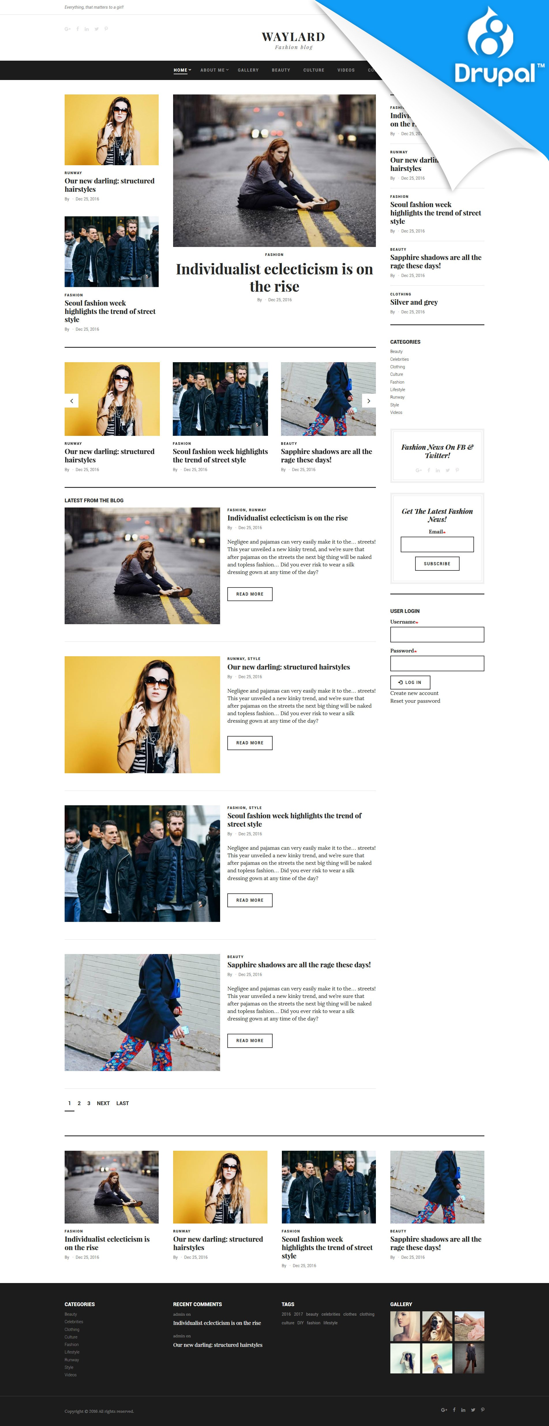 """Waylard - Fashion Blog"" 响应式Drupal模板 #59575"