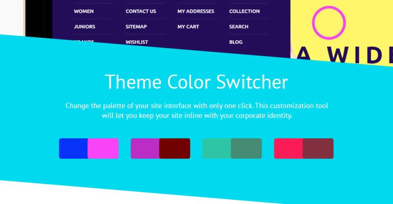 Shine Shopify Theme