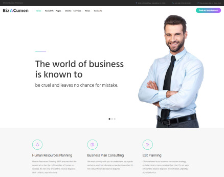 BizACumen - Consulting WordPress Theme