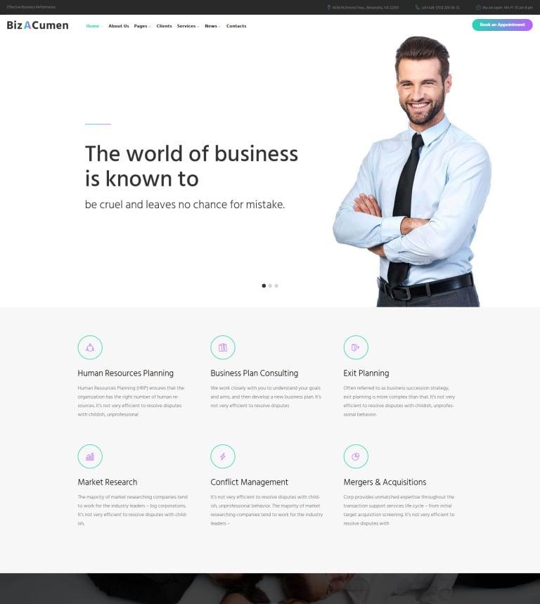 BizACumen - Consulting WordPress Theme