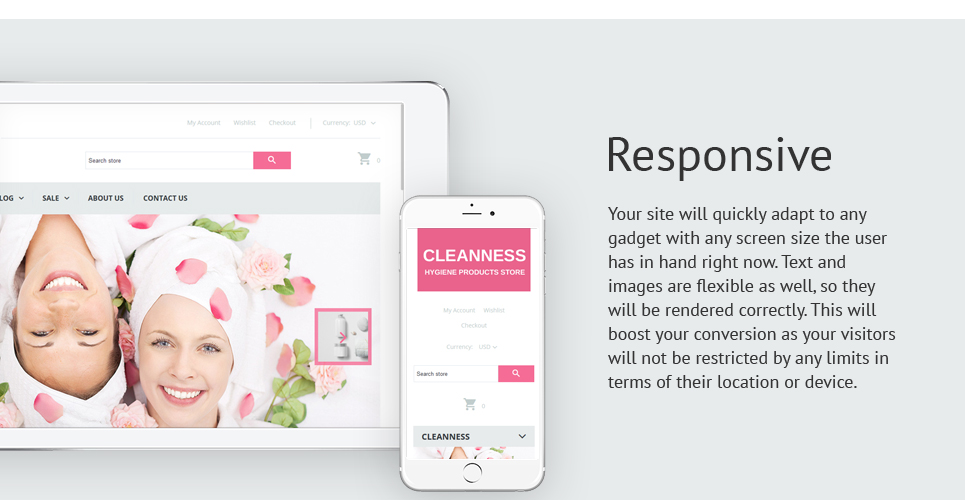 Cleanness Hygiene  Responsive Shopify  Theme