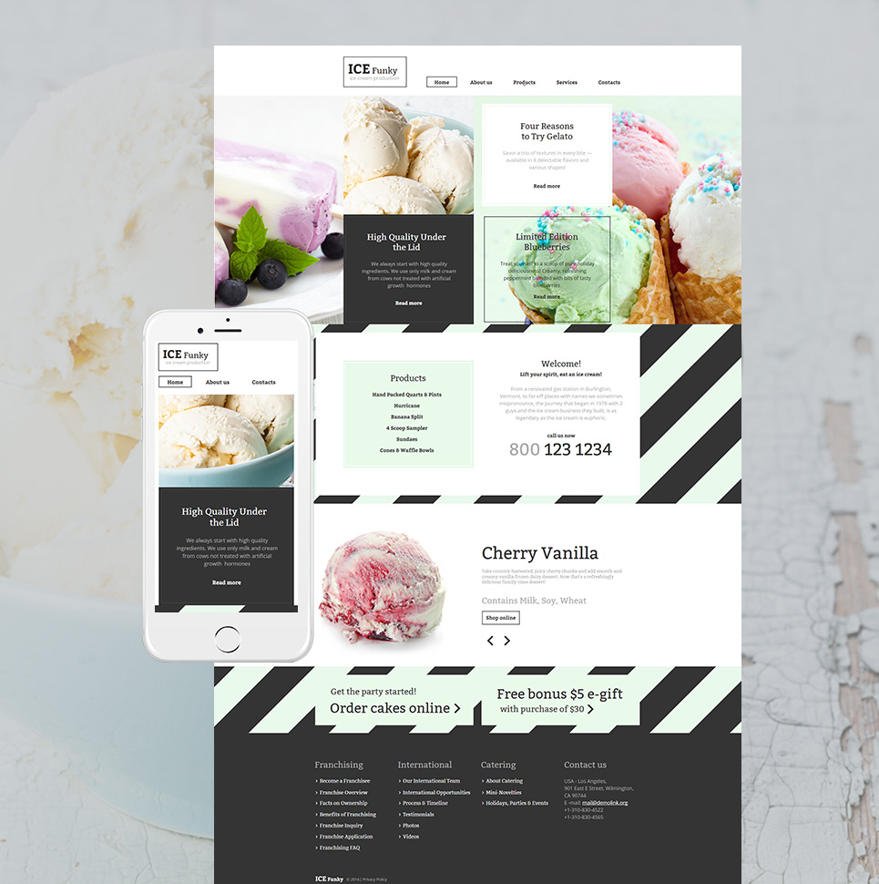 ICE Funky HTML Website Template - image
