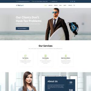 Screenshot of Tax Expert Business