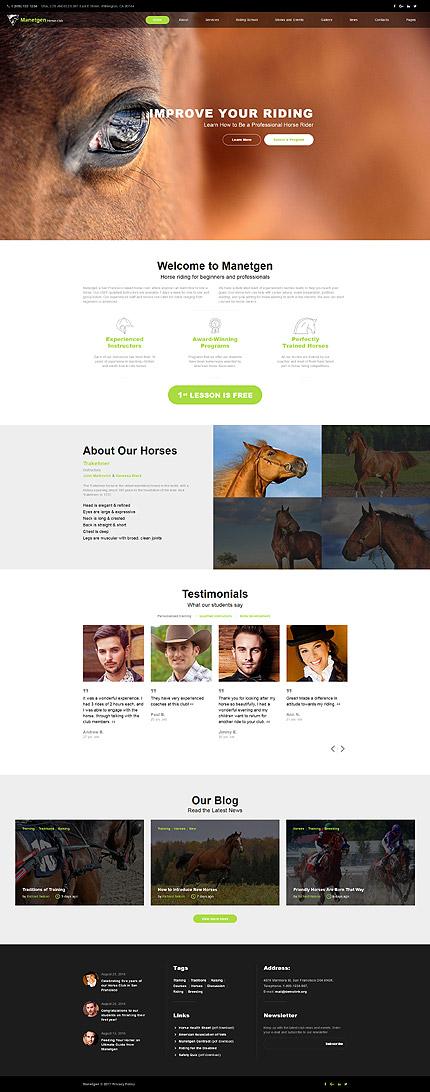 Website Template #61392
