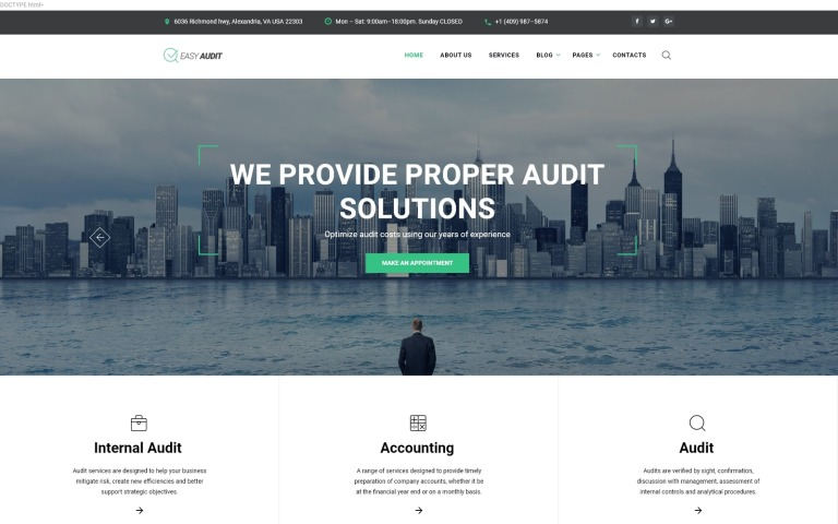 Easy Audit - Multipage Consulting Website Template Big Screenshot