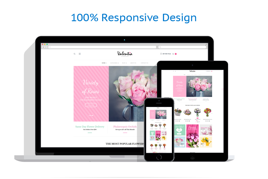 WooCommerce Themes Most Popular #62046