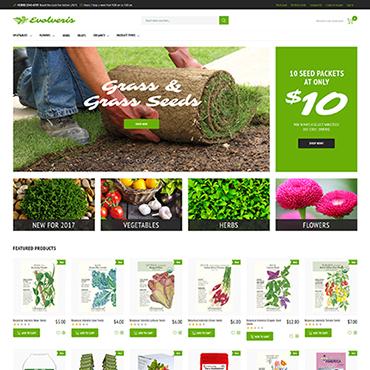 Купить  пофессиональные Magento темы. Купить шаблон #62091 и создать сайт.