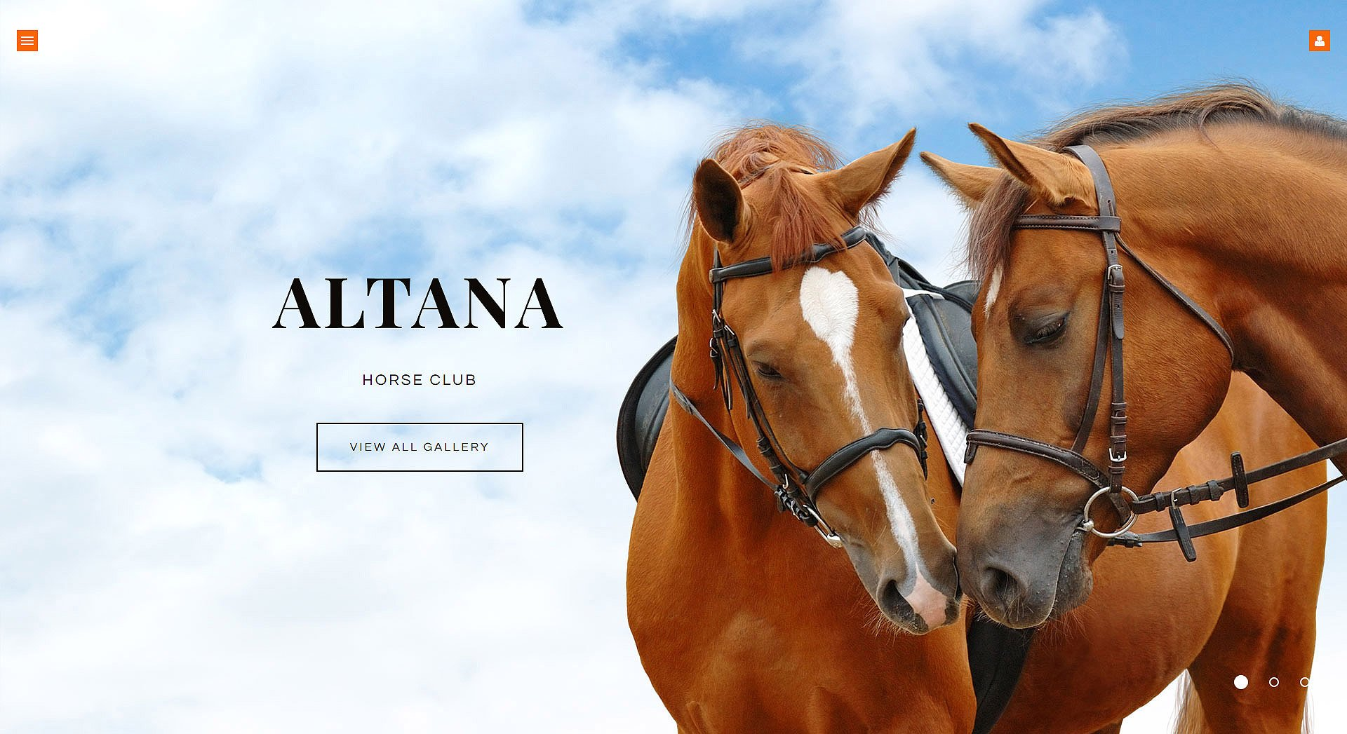 Thème Joomla adaptatif pour sites de chevaux #62009