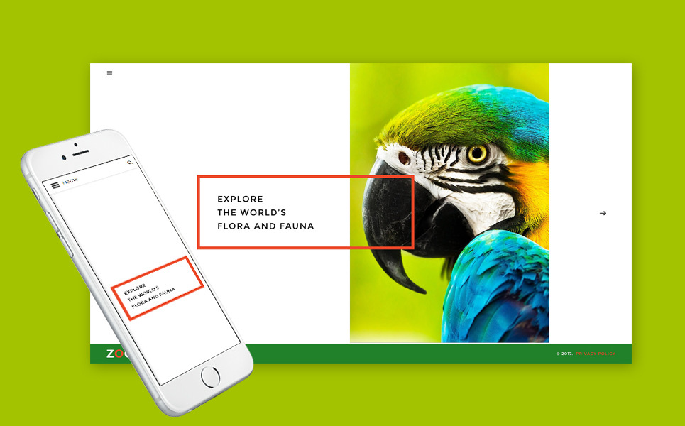 Zoo - Flora & Fauna Responsive Joomla Template New Screenshots BIG