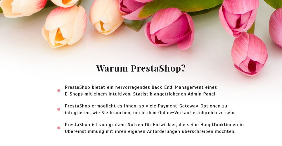 Website Design Template 62258 - orchid chrysanthemum tulip order services packing present cards holiday celebration catalog delivery chamomile daisy bouquet wrapping