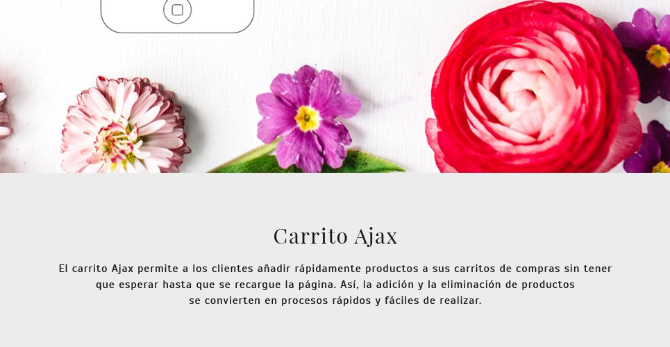 Website Design Template 62258 - wrapping