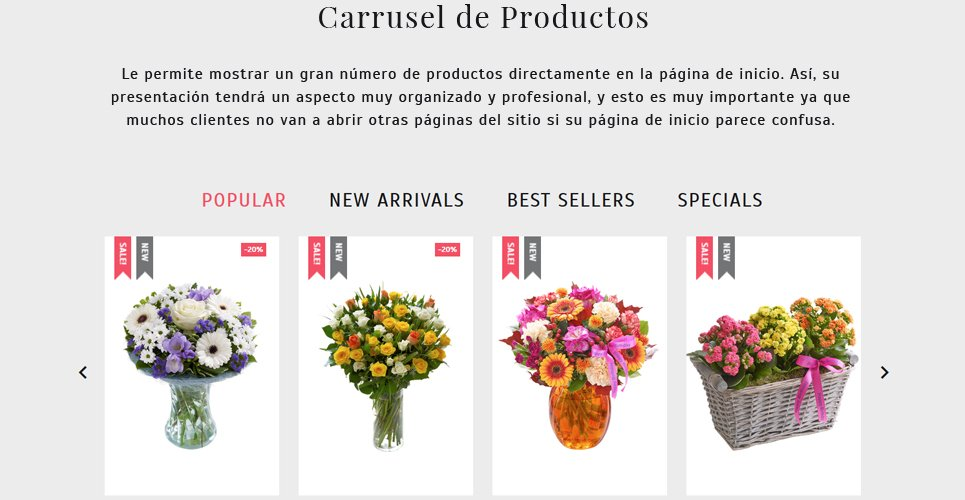 Website Design Template 62258 - flowers gifts birthday wedding engagement occasions specials exclusive roses lilies orchid chrysanthemum tulip order services packing present cards holiday celebration catalog delivery chamomile daisy bouquet wrapping
